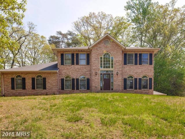 16 Little Rocky Run Lane, Stafford, VA 22554 (#ST10235613) :: Charis Realty Group