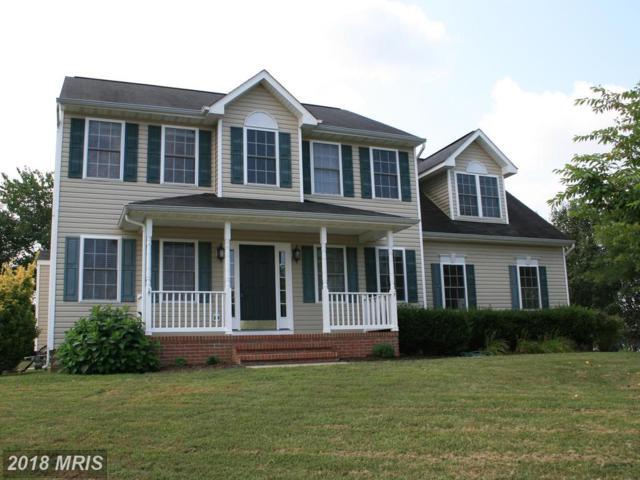 20 Sunset Ridge Lane, Fredericksburg, VA 22405 (#ST10237215) :: Bob Lucido Team of Keller Williams Integrity