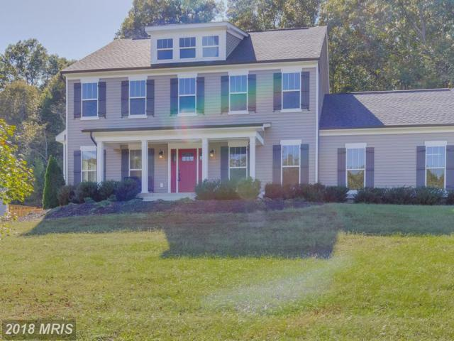 75 Fleetwood Farm Lane, Fredericksburg, VA 22405 (#ST10243158) :: Circadian Realty Group