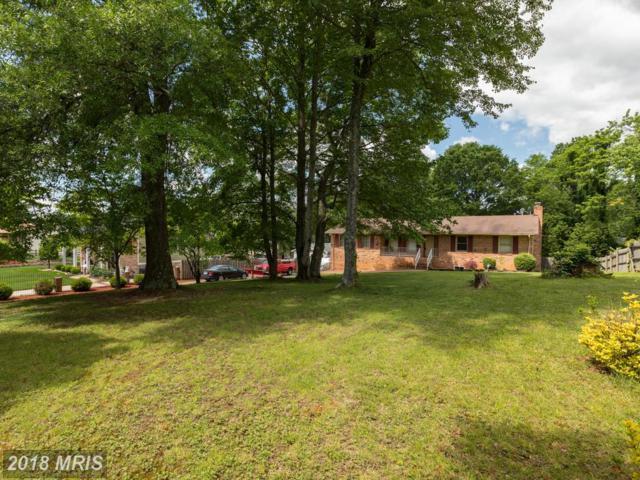 113 Shenandoah Lane, Stafford, VA 22554 (#ST10243280) :: The Gus Anthony Team