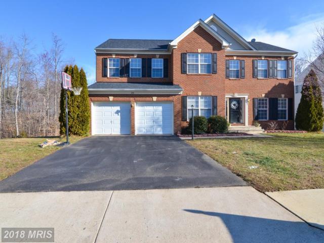 20 Neabsco Drive, Fredericksburg, VA 22405 (#ST10245741) :: Circadian Realty Group