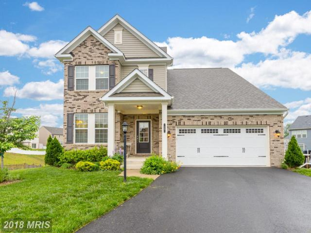 15 Plowshare Court, Stafford, VA 22554 (#ST10245921) :: Charis Realty Group