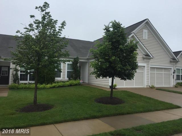 165 Castle Hill Drive, Fredericksburg, VA 22406 (#ST10246283) :: RE/MAX Cornerstone Realty