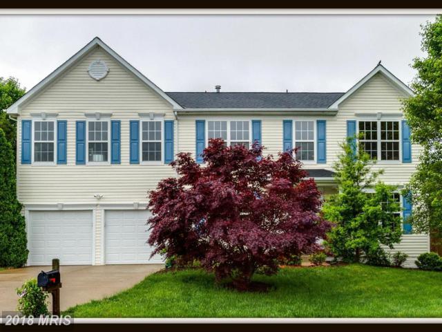 1 Bannon Lane, Stafford, VA 22556 (#ST10247910) :: RE/MAX Cornerstone Realty