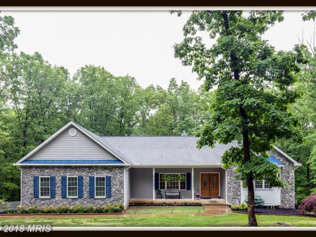 330 Skyline Drive, Fredericksburg, VA 22406 (#ST10249172) :: RE/MAX Cornerstone Realty