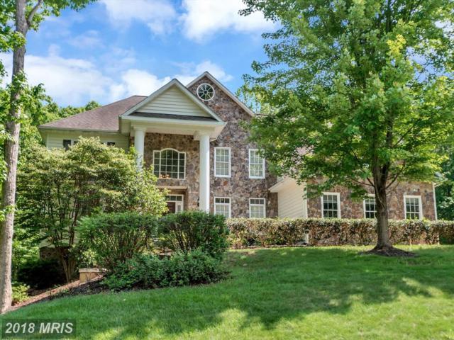 30 Partridge Lane, Stafford, VA 22556 (#ST10250103) :: Green Tree Realty