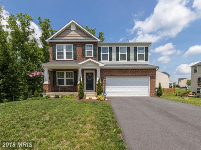 4 Tall Pine Court, Fredericksburg, VA 22406 (#ST10252767) :: The Nemerow Team