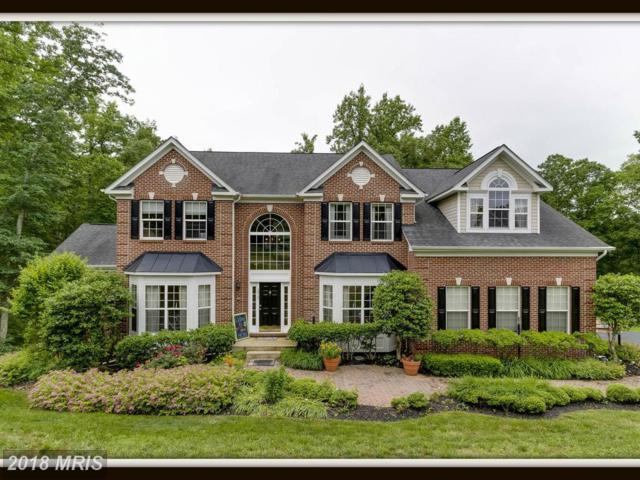 1012 Decatur Road, Stafford, VA 22554 (#ST10256325) :: Circadian Realty Group