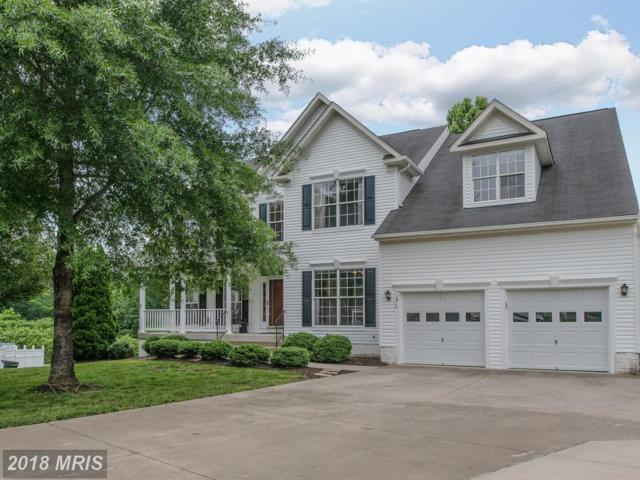 10 Saint Thomas Court, Stafford, VA 22556 (#ST10262497) :: The Bob & Ronna Group