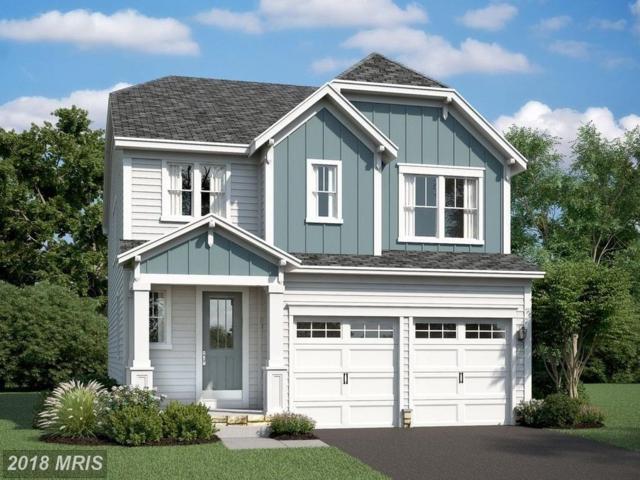 0 Boxelder Drive, Stafford, VA 22554 (#ST10263544) :: Circadian Realty Group
