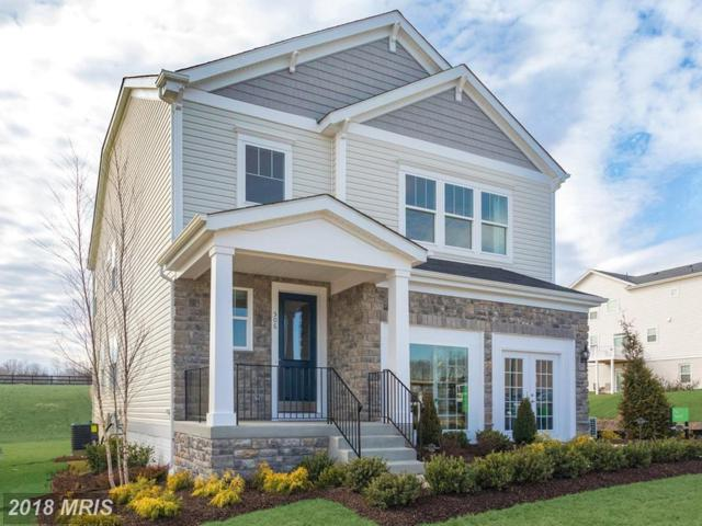 506 Sourwood Court, Stafford, VA 22554 (#ST10263550) :: Circadian Realty Group