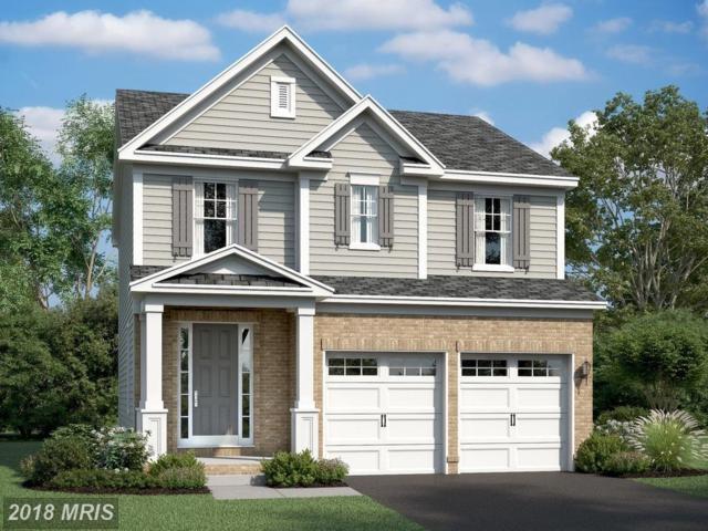 437 Boxelder Drive, Stafford, VA 22554 (#ST10268537) :: Circadian Realty Group
