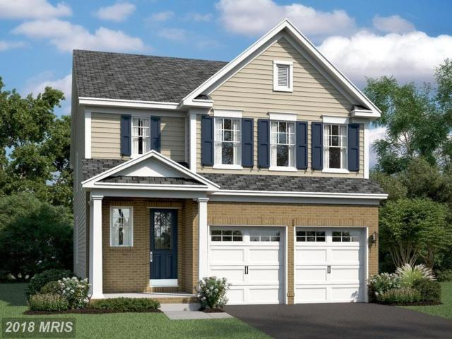 433 Boxelder Drive, Stafford, VA 22554 (#ST10268786) :: Circadian Realty Group