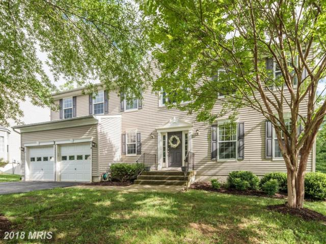 8 Saint Adams Drive, Stafford, VA 22556 (#ST10272384) :: The Bob & Ronna Group