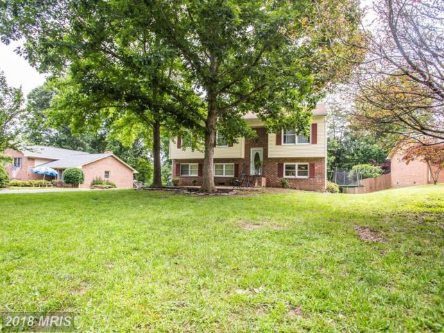 14 Cherry Laurel Drive, Fredericksburg, VA 22405 (MLS #ST10274209) :: Explore Realty Group