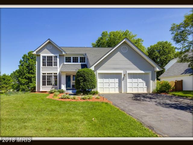 14 Appling Road, Stafford, VA 22554 (#ST10274727) :: The Bob & Ronna Group