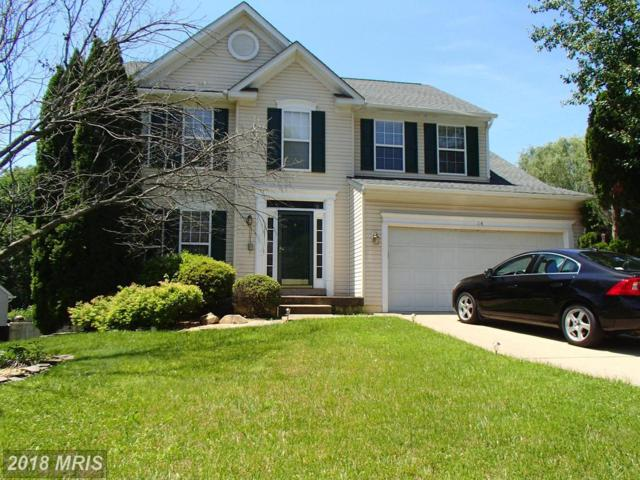 14 Westchester Court, Stafford, VA 22554 (#ST10275246) :: RE/MAX Cornerstone Realty