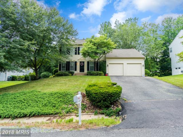 36 Charleston Court, Stafford, VA 22554 (#ST10275698) :: RE/MAX Cornerstone Realty