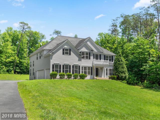 15 Chase Drive, Fredericksburg, VA 22406 (#ST10278447) :: Green Tree Realty