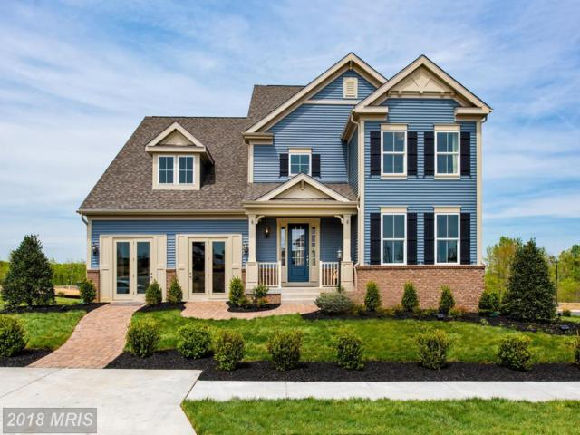 0 Apricot Street, Stafford, VA 22554 (MLS #ST10283042) :: Explore Realty Group