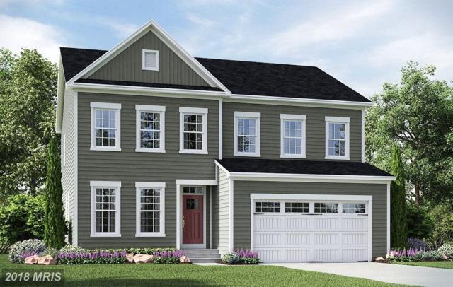 16 Shermans Ridge Road, Stafford, VA 22554 (MLS #ST10285763) :: Explore Realty Group
