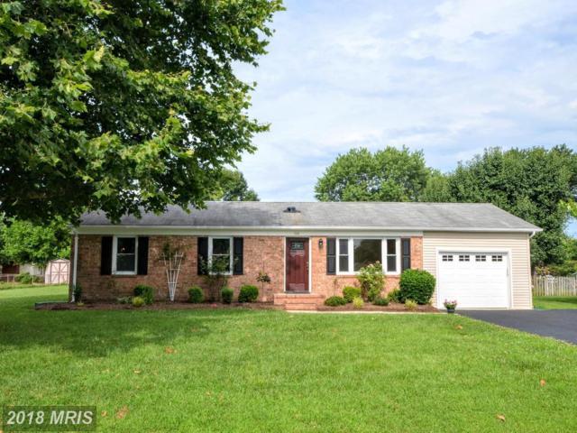 709 Bourne Street, Fredericksburg, VA 22405 (MLS #ST10290669) :: Explore Realty Group