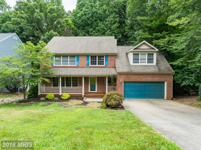 307 Ironside Cove, Stafford, VA 22554 (#ST10292729) :: The Crews Team