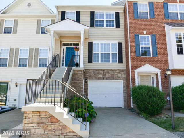 107 Sandpiper Terrace, Stafford, VA 22554 (#ST10294228) :: SURE Sales Group