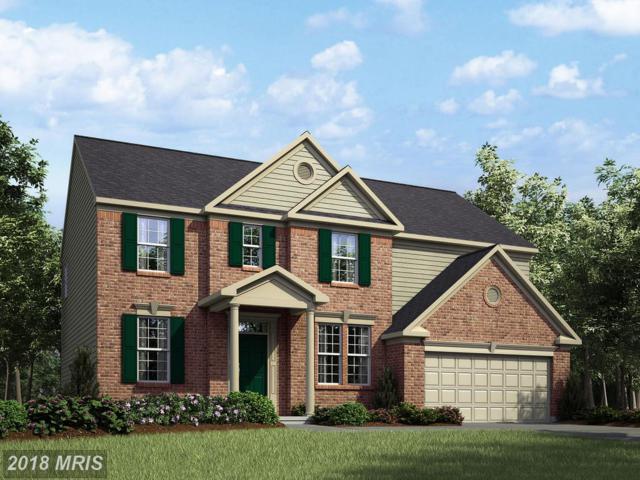 Coneflower Lane, Stafford, VA 22554 (#ST10295708) :: Bob Lucido Team of Keller Williams Integrity