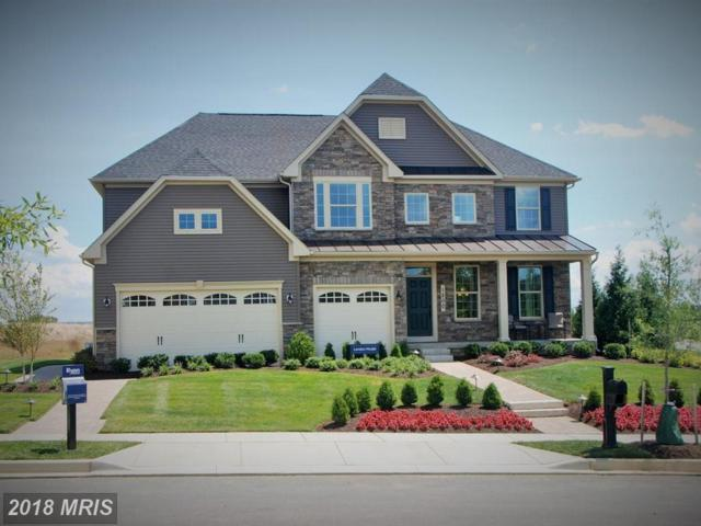 20 White Chapel Lane, Stafford, VA 22554 (MLS #ST10304088) :: Explore Realty Group