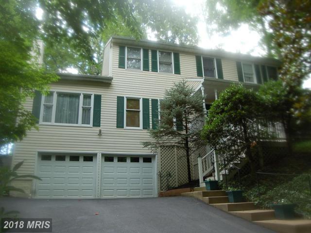 100 Chesapeake Cove, Stafford, VA 22554 (MLS #ST10304821) :: Explore Realty Group