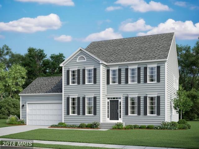 0 Saratoga Woods Lane, Stafford, VA 22556 (#ST10304828) :: Keller Williams Pat Hiban Real Estate Group