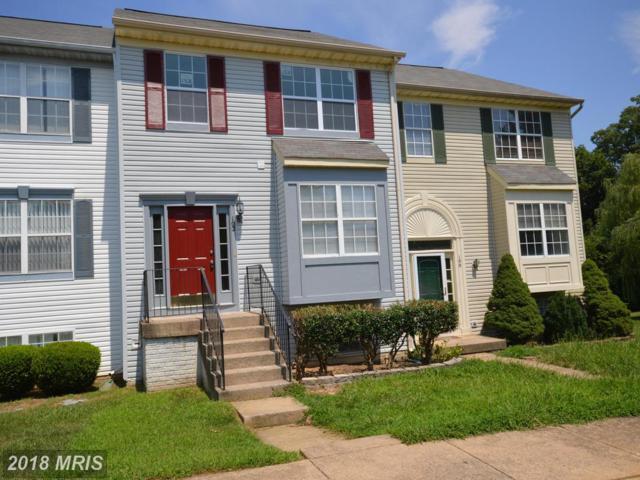 102 Hastings Drive, Fredericksburg, VA 22406 (#ST10317826) :: Bob Lucido Team of Keller Williams Integrity