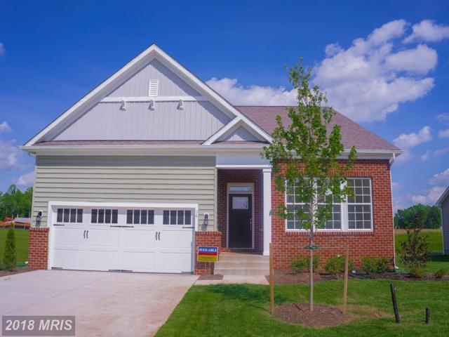 16 Hollycrest, Stafford, VA 22554 (#ST10320252) :: Browning Homes Group