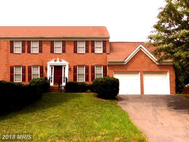 8 Rollingside Drive, Fredericksburg, VA 22406 (#ST10324564) :: Keller Williams Pat Hiban Real Estate Group