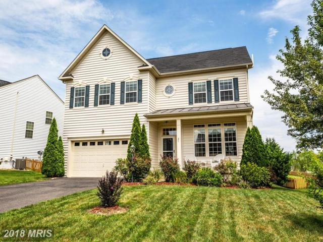 21 Manorwood Drive, Fredericksburg, VA 22406 (#ST10325308) :: Keller Williams Pat Hiban Real Estate Group