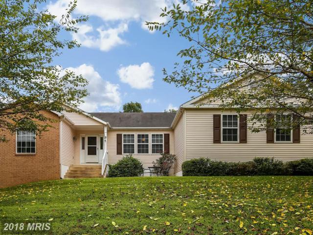15 Rosepetal Street, Stafford, VA 22556 (#ST10325917) :: RE/MAX Cornerstone Realty