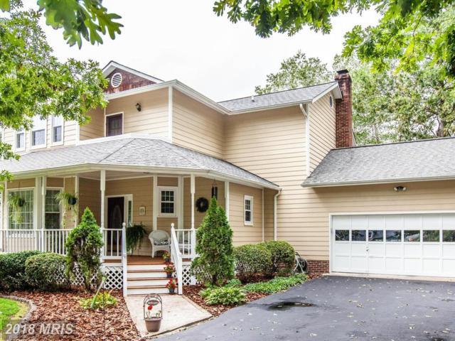 14 Braddock Drive, Fredericksburg, VA 22405 (#ST10326725) :: Green Tree Realty