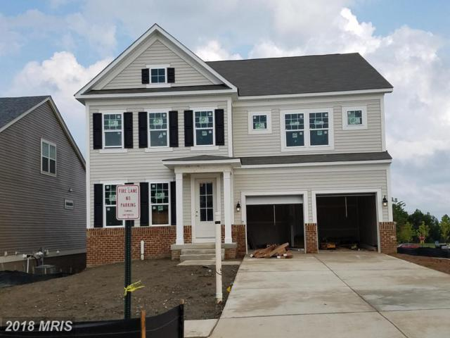991 Coriander Lane, Stafford, VA 22554 (#ST10334625) :: Labrador Real Estate Team