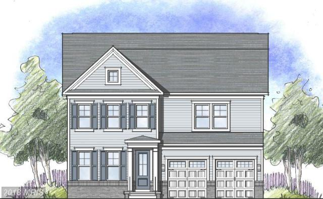 Coneflower Dr- Holston, Stafford, VA 22554 (#ST10335191) :: Labrador Real Estate Team