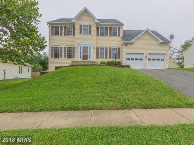 4 Cloverleaf Court, Fredericksburg, VA 22406 (#ST10346843) :: Keller Williams Pat Hiban Real Estate Group