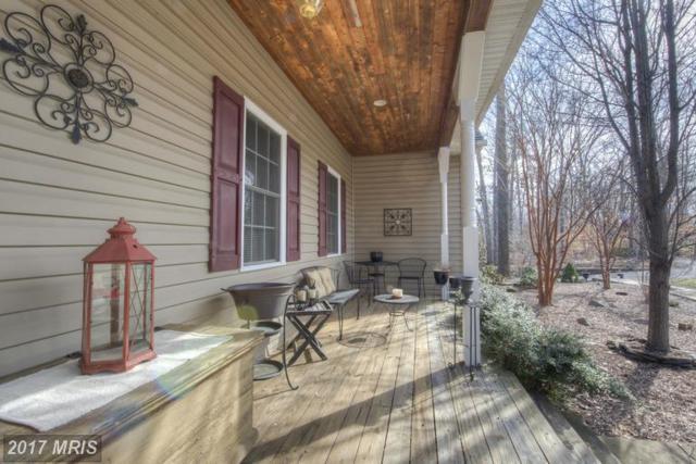 254 Spotted Tavern Road, Fredericksburg, VA 22406 (#ST9867864) :: LoCoMusings