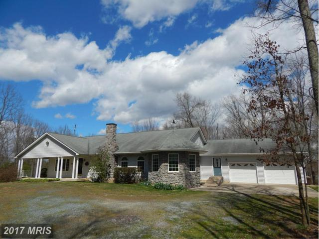 65 Sycamore Ridge Road, Fredericksburg, VA 22405 (#ST9897305) :: LoCoMusings