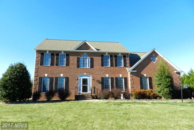 1 Ironwood Road, Fredericksburg, VA 22405 (#ST9901277) :: LoCoMusings