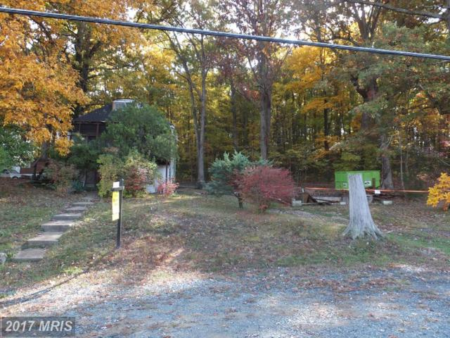 2976 Jefferson Davis Highway, Stafford, VA 22554 (#ST9908694) :: Pearson Smith Realty