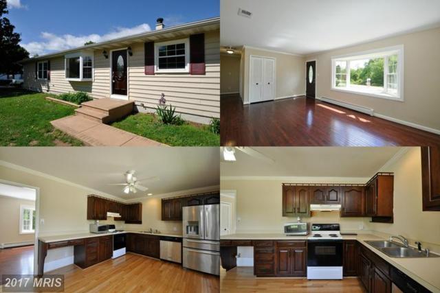 169 Hulls Chapel Road, Fredericksburg, VA 22406 (#ST9929268) :: LoCoMusings