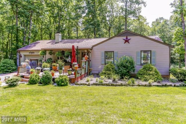 34 Richland Road, Fredericksburg, VA 22406 (#ST9954063) :: Pearson Smith Realty
