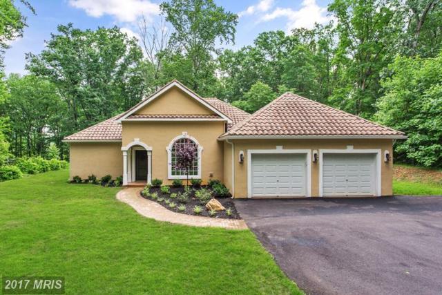 6 Ridgeview Circle, Fredericksburg, VA 22406 (#ST9964254) :: LoCoMusings