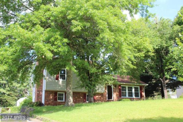 119 Shenandoah Lane, Stafford, VA 22554 (#ST9971114) :: LoCoMusings