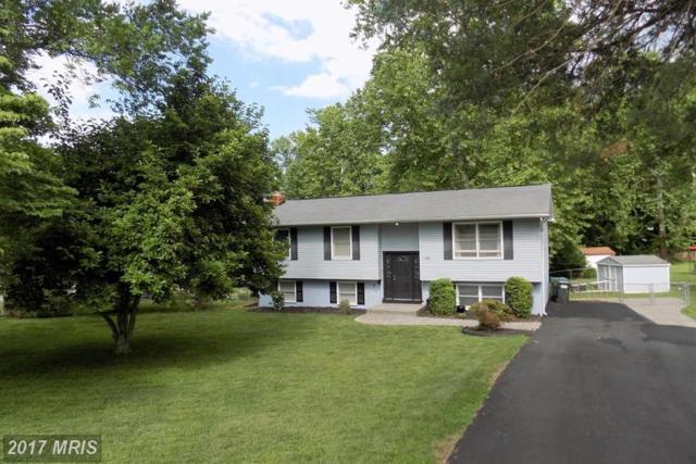 229 Oak Grove Lane, Stafford, VA 22556 (#ST9972066) :: LoCoMusings